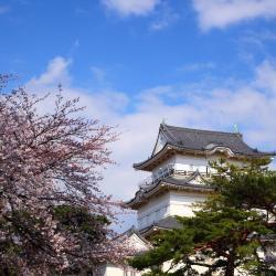 Odawara 20 hoteles