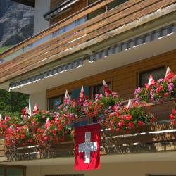 Ringgenberg 15 hotéis
