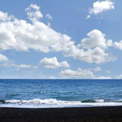 لوفينا 168 فندق يضم مسبح