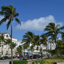 Miami Beach 297 apartamentos