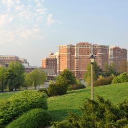 Alexandria 72 hotéis
