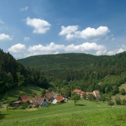 Wilhelmsfeld 3 hotéis