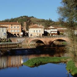 Mejores hoteles y hospedajes cerca de Montesquieu-Volvestre ...