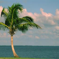 North Palm Beach 6 hotéis