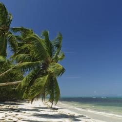 Grand'Anse Praslin 39 khách sạn
