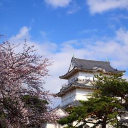 Aizuwakamatsu 25 hotéis