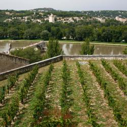 Villeneuve-lès-Avignon 73 hotéis