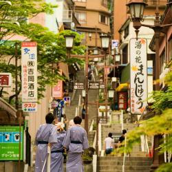 Shibukawa 25 hotéis