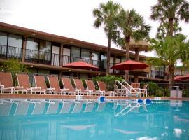 Magic Tree Resort