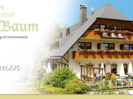 Hotel Höhengasthof Grüner Baum