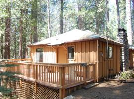 9S Pine Cabin, South Wawona