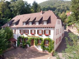 Die Hirschgasse Heidelberg