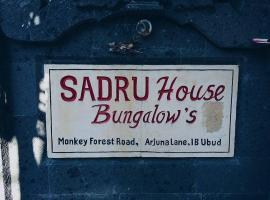 Sadru House