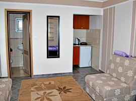Apartments in villa Viktoria
