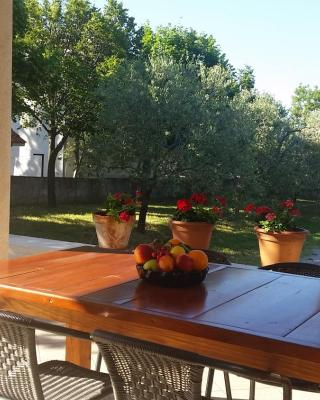 Guesthouse Neven Paklenica