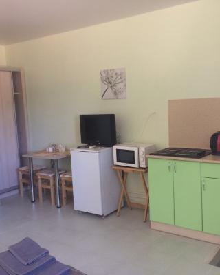 Apartaments on Shmidta 35