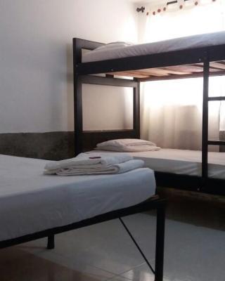 cactus city hostel confort