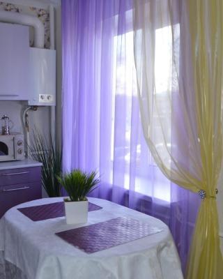Apartment on Dzerzhynskogo