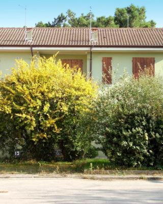 Apartments in Rosolina Mare 24933