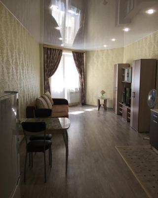 Apartment on Suvorova 11