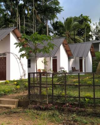 Sinharaja Forest Sanctuary