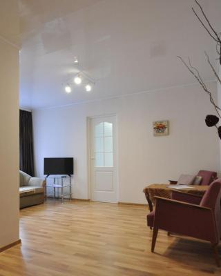 Kreenholmi 5 Apartment