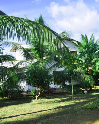 Coconut Garden House