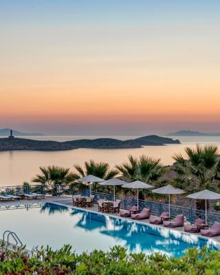 Sunrise Beach Suites