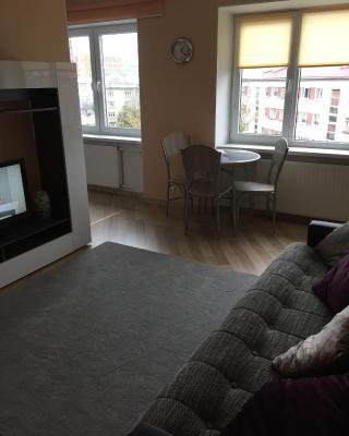 Puskini 22 Apartment