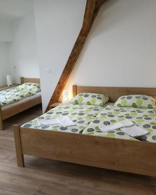 بيت شباب لايف سلوفينيا