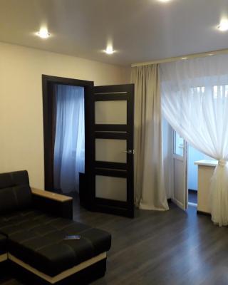 Apartment on Meretskova-Volosova