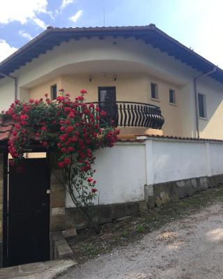 Lazarovi Houses