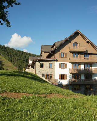 Apartments Breza & Tisa, Ribniško Pohorje