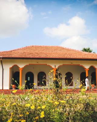 Joytinat Foundation - Yoga & Ayurveda Center