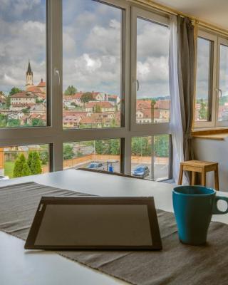 GGF - Grey green and fun in Slovenia Novo mesto