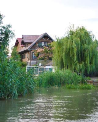 Yogi Dunavat de Jos