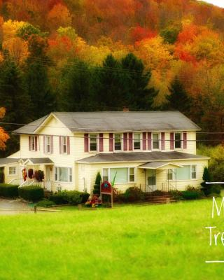 Mountain Treasure Bed and Breakfast