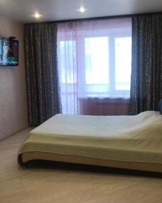 Tsentralnaya Apartament