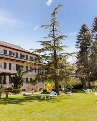 فندق-إنتر سانت-جوليان-إن-جينيفوا سود ريه دو مونت سيون