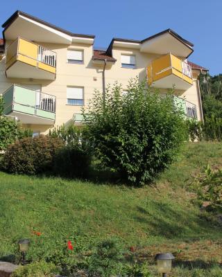 Apartments Veno