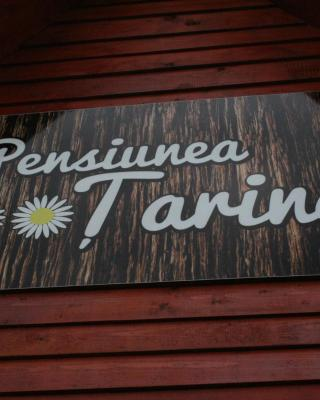 Pensiunea Tarina
