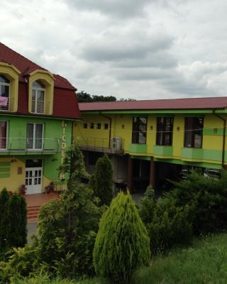 Hotel Nicoleta