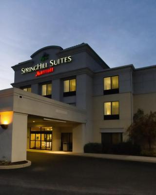 SpringHill Suites by Marriott Hershey Near The Park