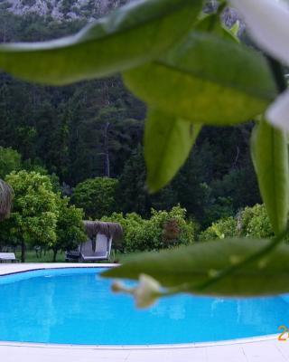 فندق بورتاليمو لودج - للبالغين الأكبر من 12 عام فقط