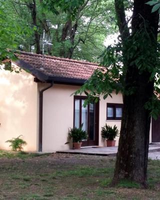 Casa de vacaciones The Garden House (Italia Busto Arsizio ...