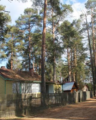 House Sokol 14