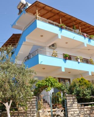 Villa Nertili