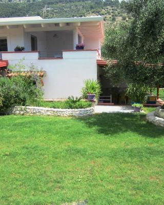 B&B Casa Vacanze Tor Di Lupo