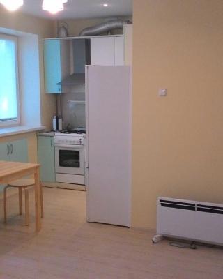 Apartment Krivova 9