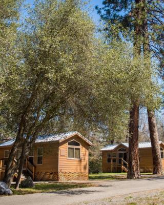 Sierra Meadows